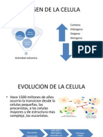Origen de La Celula
