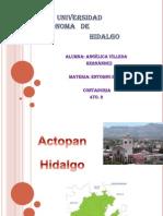 Actopan (Hidalgo)