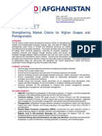 Fact Sheet Market Chain Grapes Pomegrantes FINAL June 2011