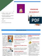 SINDROME BURNOUT. ENERO.pdf