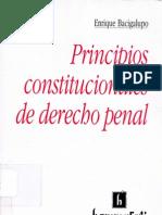 26632806 Principios Constitucionales de Derecho Penal