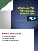Histoplasmosis, Lobomicosis, Aspergilosis