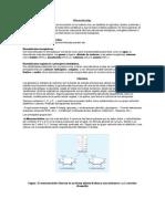 biomoleculasy lipidos