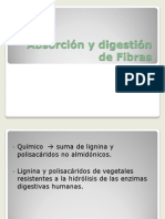 Absorció ny digestión Fibras[1]