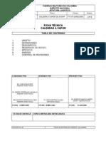 ficha tecnica caldera.pdf