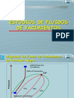Exgeo - Reservoir_Fluids