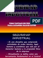 seguridadindustrial-110424023011-phpapp01