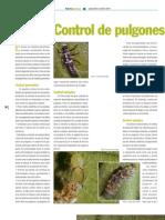 Control de Pulgones