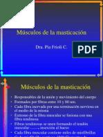 Musculos de Masticacion