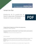 Evaluacion Produccion Biomasa Setaria Sphacelata