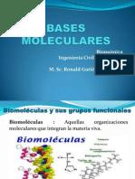 Bases Moleculares-clase 2