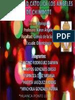 Monografia de Pato IIIunidad_lesly Huanca