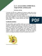 casoclinico_anestesiaepidural(1)