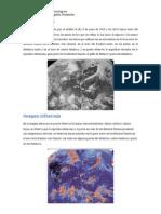 Imagenes Meteorologicas
