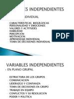 Variables Independientes- En El Plano Grupal