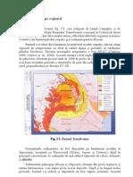 Geologia Bazinului Transilvania Complet