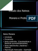 5843 Monera e Protista 6 Serie