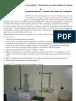 Biodigestor de página de biotecnología