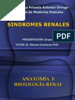 11alteraciones-renales3128 (1)