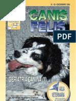 Geriatría Canina II-MusicIsLife7