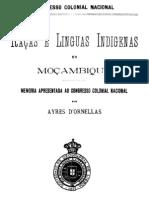 Ayres D'Ornellas 1875