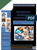 Revista+de+Desarrollo+Organizacional