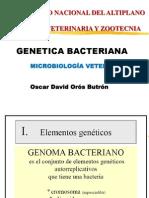 7 GENETICA bacteriana mutaciones.pptx