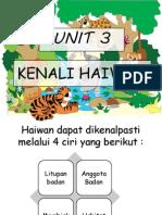 KENALI HAIWAN