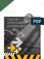 Gua de Enfermedades Profesionales. Ugt 2009