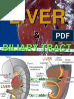 Ch18 Liver