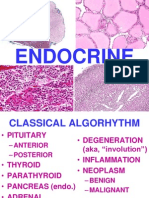 Ch24 Endocrine
