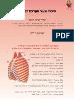 סיכום - מערכת הנשימה