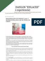 MATRIZ EXTRA-CELULAR DE VEJIGA DE CERDO_ REGENERACIÓN DE TEJIDOS