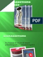Principios Basicos Del Biomagnetismo Medico
