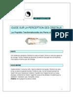 Guide Sur La Perception Des Cristaux Par Lespasseurs.com