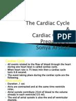 The Cardiac_Cycle and Cardiac output