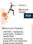 Activity 4 - Muscular Tissues