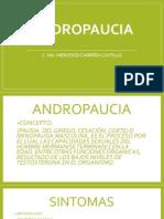 ANDROPAUCIA