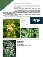 listadeplantaseervascomestveis-130118071948-phpapp02.pdf