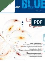 DMR Blue -- Leading digital! (English Version)