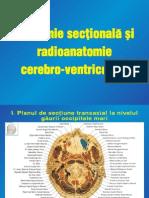 Curs Anatomie Sectionala si Radioanatomie Cerebro-Ventriculara