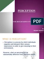 PERCEPTION1.pptx
