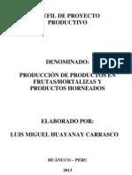 Proyecto de Inersion 2013