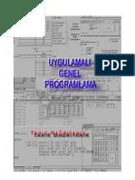 Uygulamalı Genel Programlama