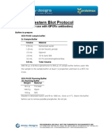 Protocol GPCR WB