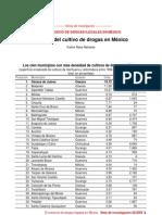 mapa del cultivo de drogas en México.pdf