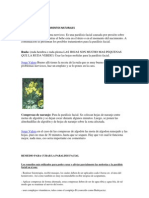PARÁLISIS FACIAL TRATAMIENTOS NATURALES.docx