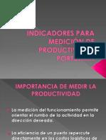 INDICADORES PARA MEDICIÓN DE PRODUCTIVIDAD PORTUARIA