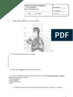 Ficha de avaliação de Ciências Naturais do 9º Ano - sistemas respiratório e digestivo