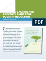 COLLECTIVE ACTION AND PROPERTY RIGHTS FOR POVERTY REDUCTION.pdf